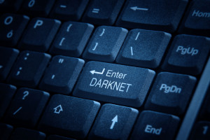 stock-photo-enter-darknet-294132083